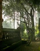 Bali 3-2014-9852