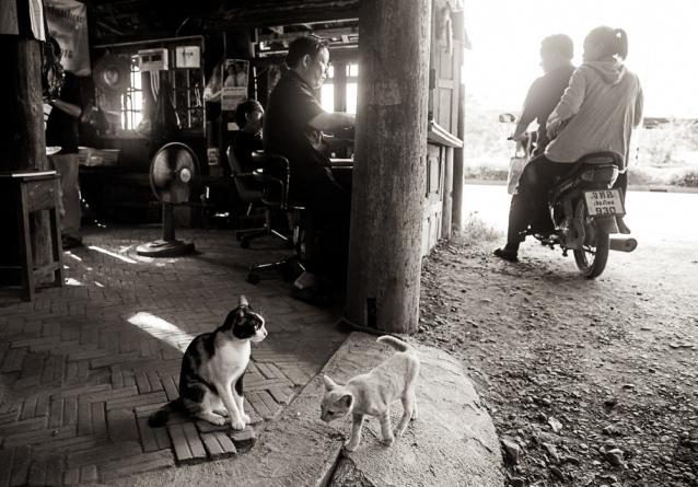 chiangmai-roadtrip-10-2016-0560