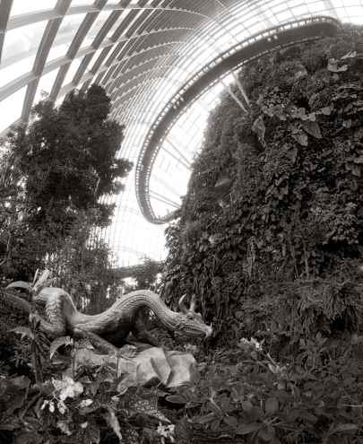 Garden by the Bay #7.