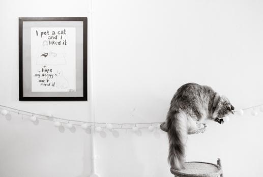 Cat Cafe #1
