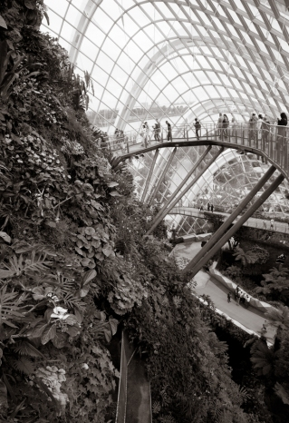 Garden By The Bay #4