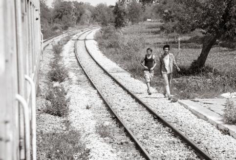 Walking the Tracks #5