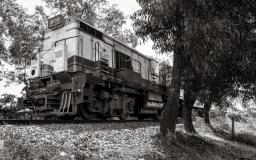 Walking the Tracks #3