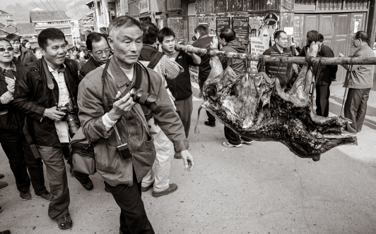 china.ny.14.guilin.pig